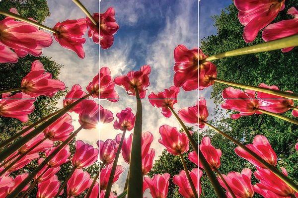 آسمان مجازی طرح گل