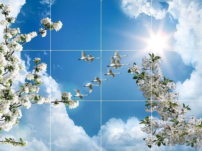 آسمان مجازی طرح شکوفه